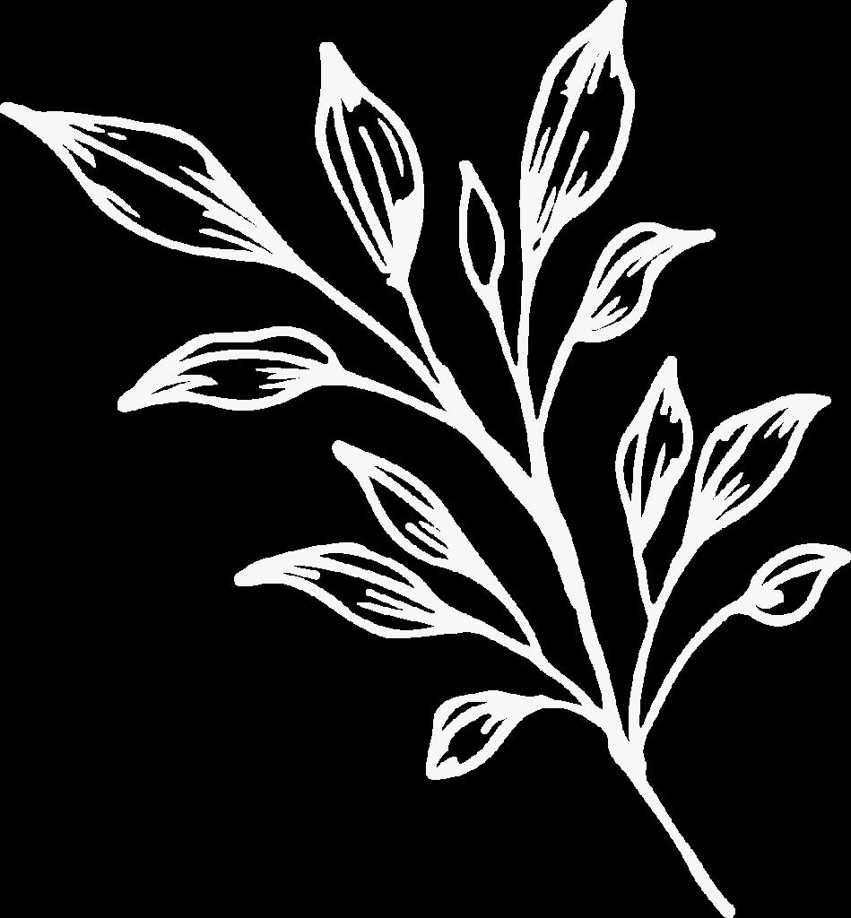 hero - plant 2