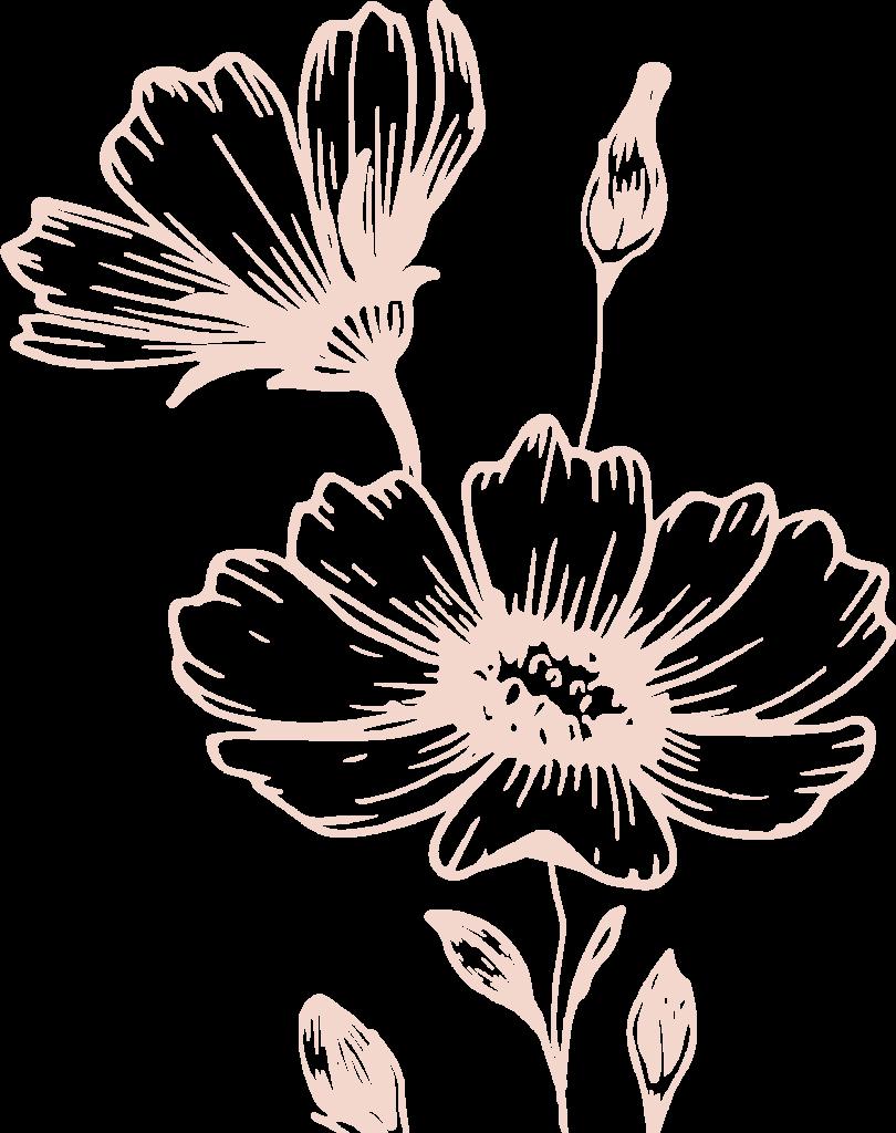 plant 5 (1)